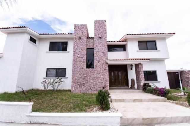 Calle Erizo Calle Tiburon, La Paz, BS  (MLS #19-794) :: Los Cabos Agent