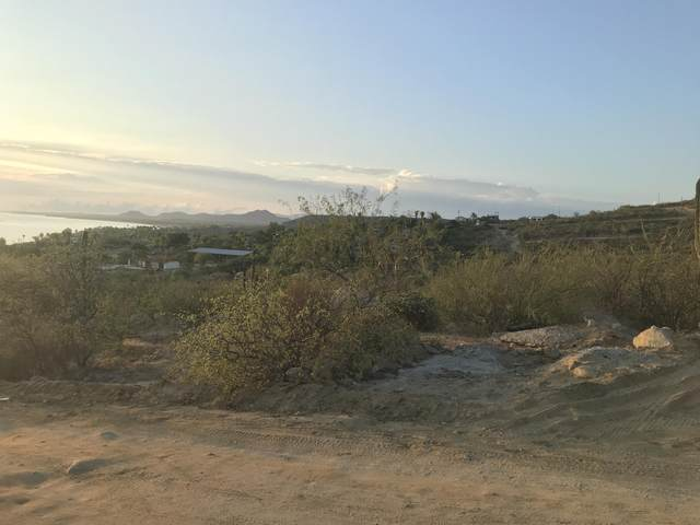 Buenavista, East Cape, BS  (MLS #20-1649) :: Own In Cabo Real Estate