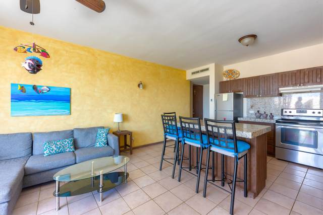 Modelorama Road #9, Cabo Corridor, BS  (MLS #20-1711) :: Own In Cabo Real Estate