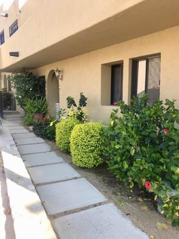 Crispin Cesena #1, Cabo Corridor, BS  (MLS #20-1736) :: Own In Cabo Real Estate
