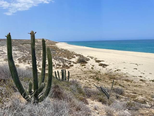 Camino Costero, East Cape, MX  (MLS #21-2166) :: Own In Cabo Real Estate