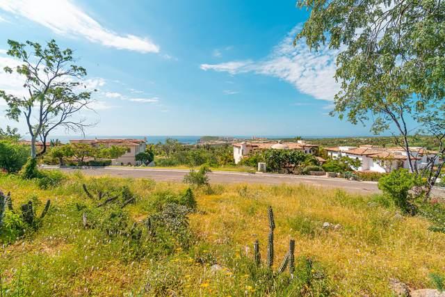 Las Colinas, Cabo Corridor, MX  (MLS #21-3134) :: Own In Cabo Real Estate