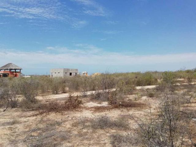 Zona Ahorcadita 1 Etapa, Pacific, BS  (MLS #18-1871) :: Los Cabos Agent