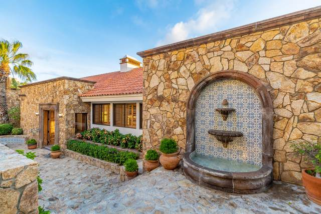 Callejon Calafia, Cabo San Lucas, BS  (MLS #20-2036) :: Own In Cabo Real Estate