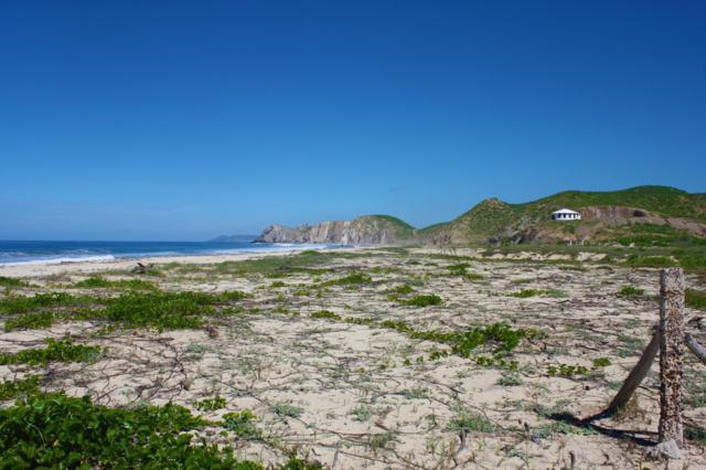 Lote 4, Fraccion I, Pacific, BS  (MLS #18-1072) :: Los Cabos Agent