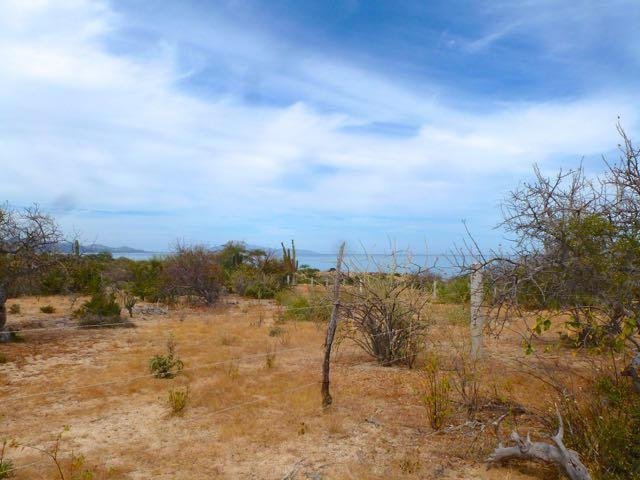 Beach Road, East Cape, BS  (MLS #16-395) :: Los Cabos Agent
