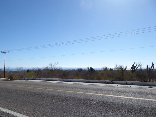 Buena Vista Hwy #1 - Photo 1