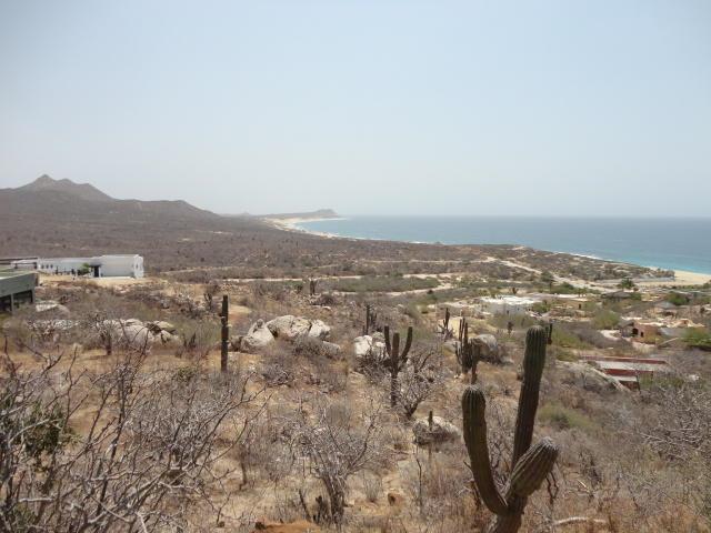 Calle Zacaton, San Jose del Cabo, BS  (MLS #17-1334) :: Los Cabos Agent