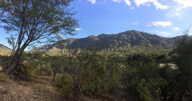 San Felipe, San Jose del Cabo, BS  (MLS #17-2463) :: Ronival
