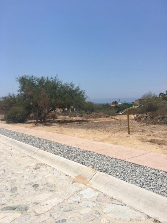 Paseo Bugambilias, San Jose Corridor, BS  (MLS #18-1246) :: Los Cabos Agent