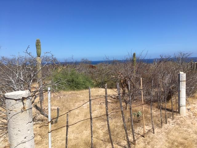 lote 2 Calle S/N, East Cape, BS  (MLS #19-1012) :: Los Cabos Agent
