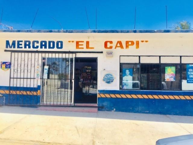 Prof. Juan Pedrin Castillo, San Jose del Cabo, BS  (MLS #19-1526) :: Los Cabos Agent