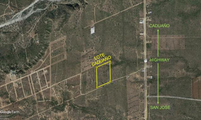 Caduano Not Ejido Land, East Cape, BS  (MLS #19-1545) :: Ronival