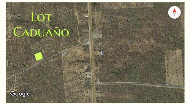 https://bt-photos.global.ssl.fastly.net/bajacali/orig_boomver_1_19-1545-2.jpg