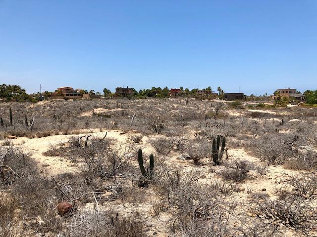 SN Camino Las Playitas, Pacific, BS  (MLS #19-1614) :: Los Cabos Agent