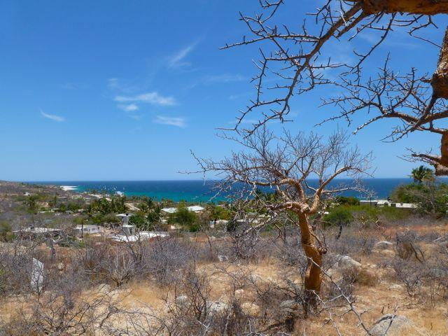Calle S/N, East Cape, BS  (MLS #19-1732) :: Los Cabos Agent