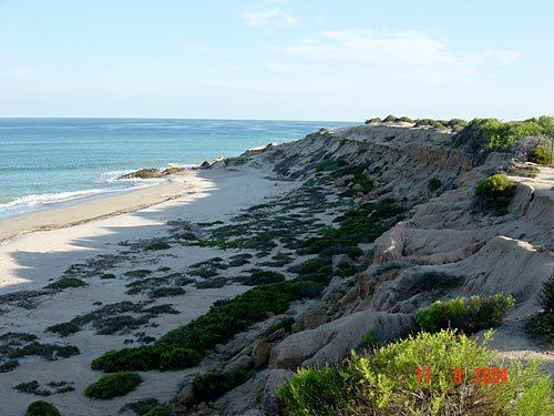 Vinorama To Cabo Pulmo, East Cape, BS  (MLS #19-2090) :: Los Cabos Agent