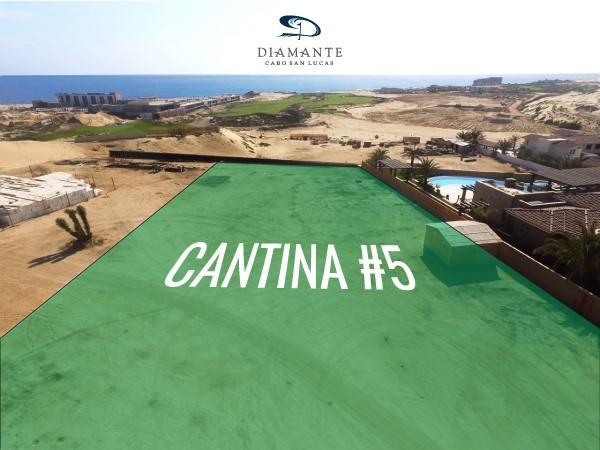 Cantina 5, Pacific, BS  (MLS #19-2122) :: Ronival