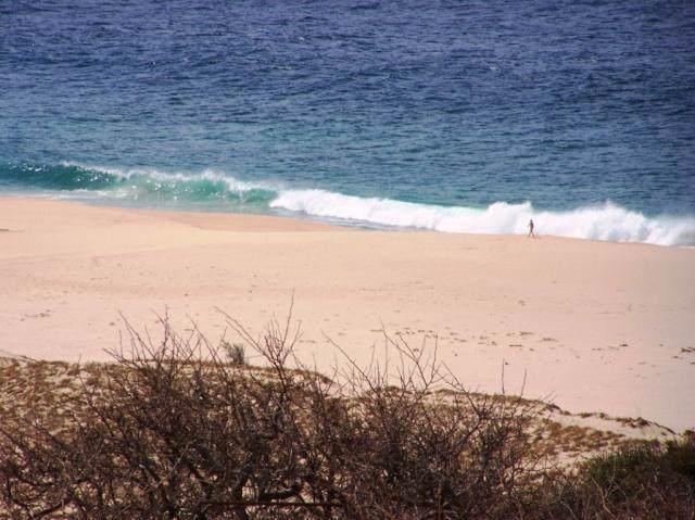 predio La B Predio La Laguna Via De Lerry, Pacific, BS  (MLS #19-2417) :: Los Cabos Agent