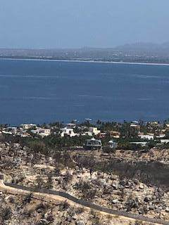 S/N, East Cape, BS  (MLS #19-2739) :: Los Cabos Agent