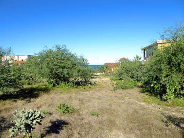 Buena Vista, East Cape, BS  (MLS #19-3321) :: Coldwell Banker Riveras