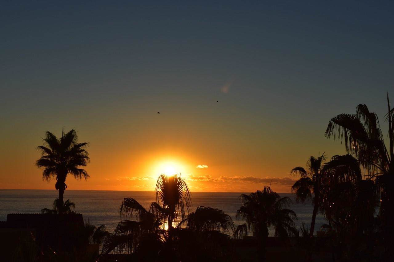 Misiones Del Cabo - Photo 1