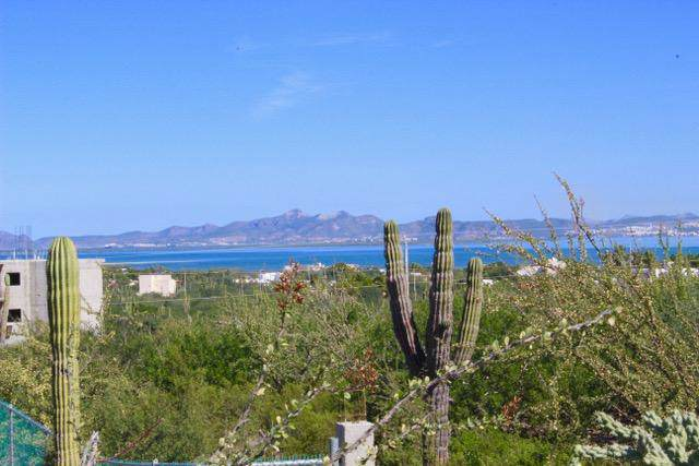 Calle 18, La Paz, BS  (MLS #19-3568) :: Own In Cabo Real Estate