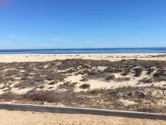 Ave Playa Tortuga, East Cape, BS  (MLS #19-414) :: Los Cabos Agent
