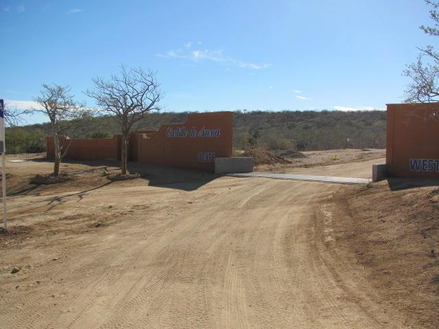 Pitaya Calle, East Cape, BS  (MLS #19-584) :: Own In Cabo Real Estate