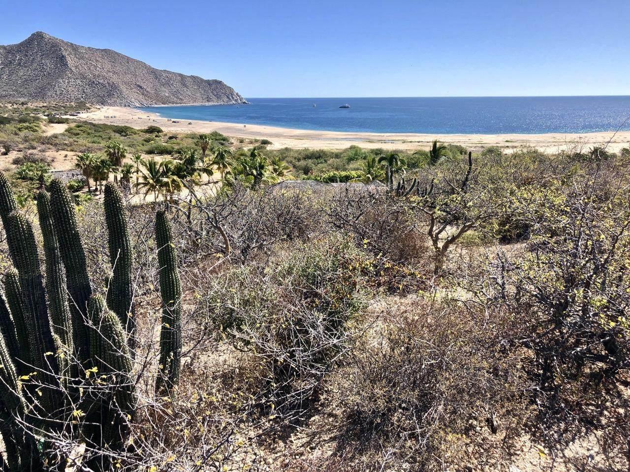 Los Frailes, La Huerta, I-7/8 - Photo 1