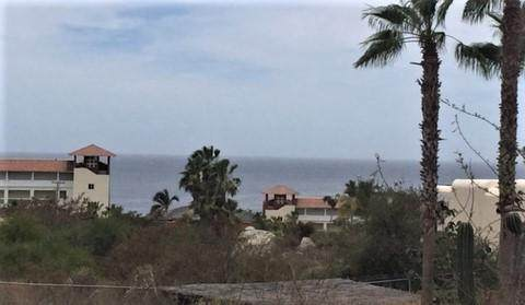 Paseo De Los Cabos, Cabo Corridor, BS  (MLS #20-1497) :: Own In Cabo Real Estate