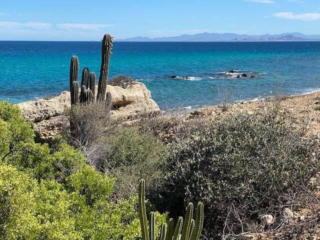 Montemar Beachfront #18 - Photo 1