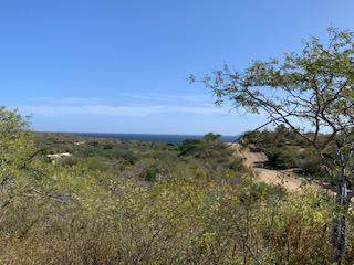 Laguna Hills Block 4 Lot 2, San Jose del Cabo, BS  (MLS #21-120) :: Coldwell Banker Riveras