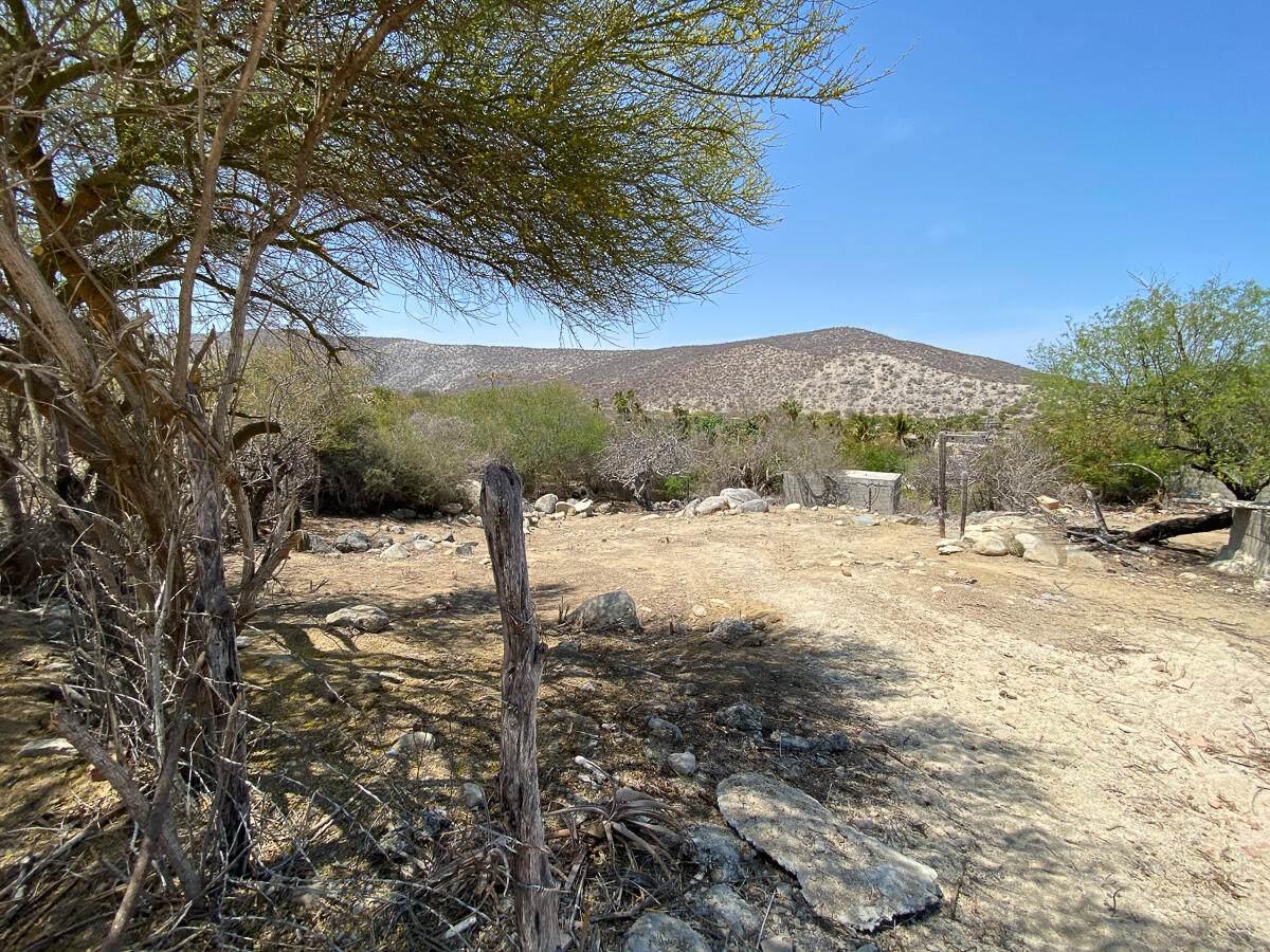 Buena Vista Affordable Lot - Photo 1
