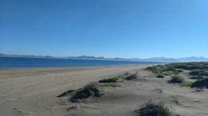 El Mogote, Lot 49, La Paz, BS  (MLS #21-171) :: Coldwell Banker Riveras