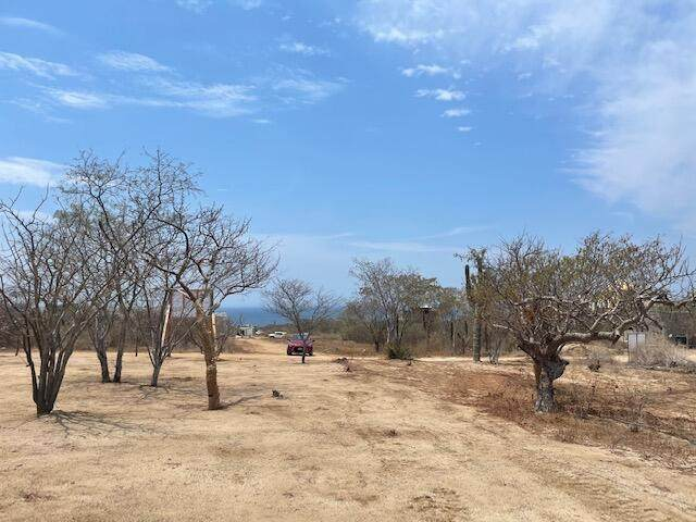 Callejon, Cabo Corridor, BS  (MLS #21-1799) :: Own In Cabo Real Estate