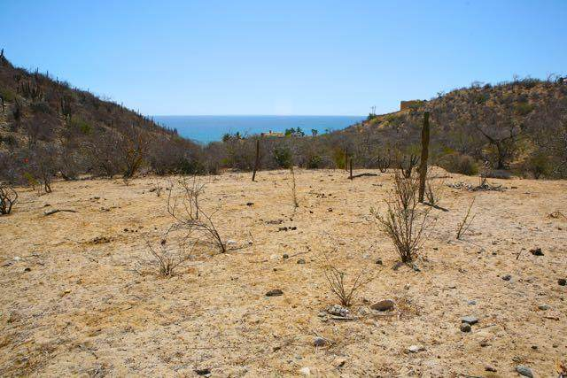 Canyon De Silencio Lot A And B, East Cape, BS  (MLS #21-187) :: Own In Cabo Real Estate