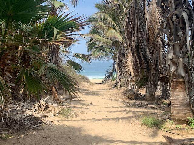 Rosa Del Pacifico,, Pacific, MX  (MLS #21-2167) :: Own In Cabo Real Estate