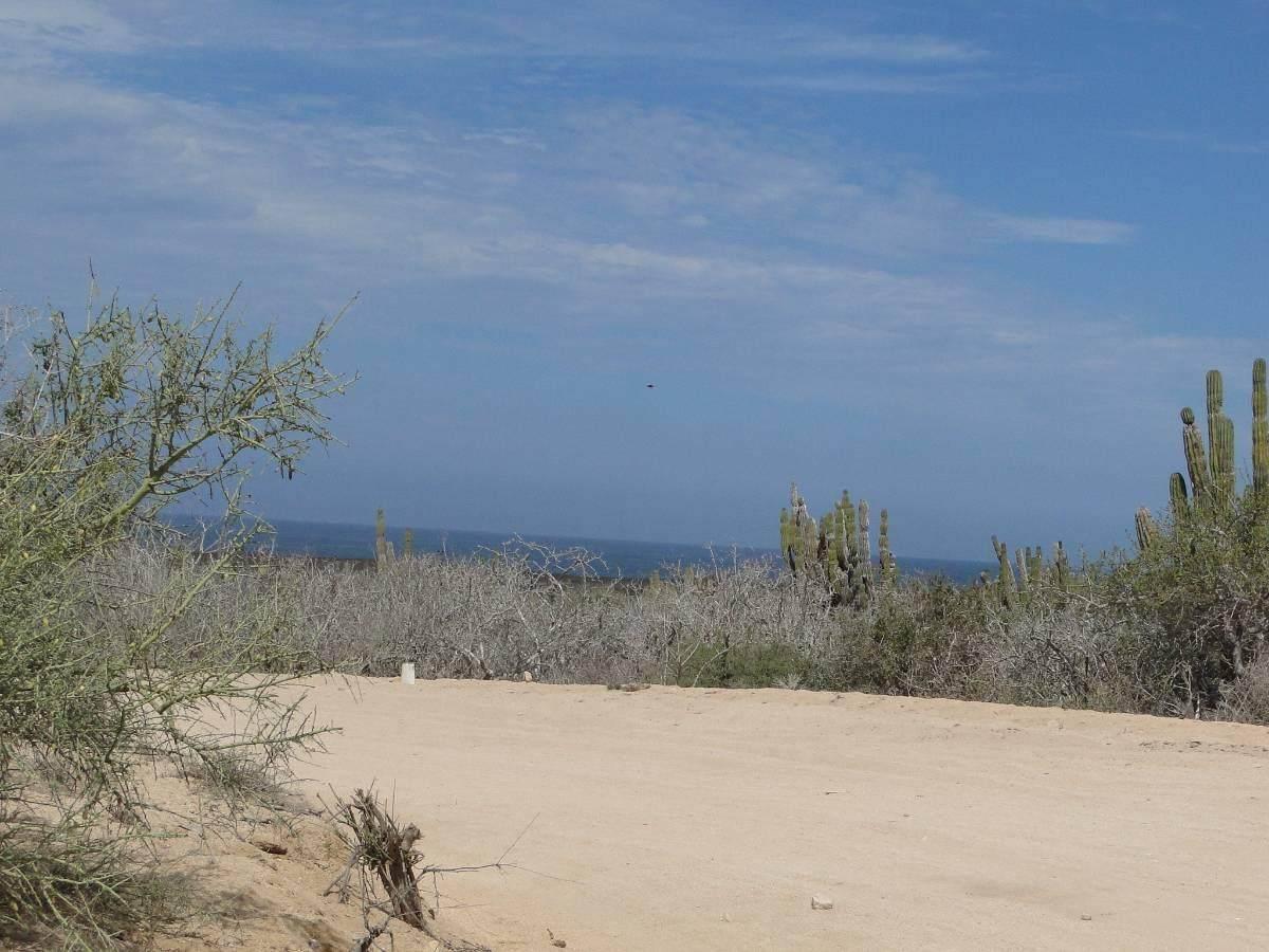 Camino La Langosta - Photo 1