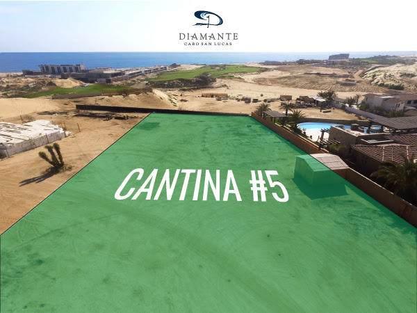 Cantina Lot #5 - Photo 1