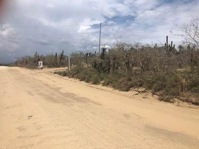 Cerritos Main Access Road, Pacific, MX  (MLS #21-2659) :: Ronival