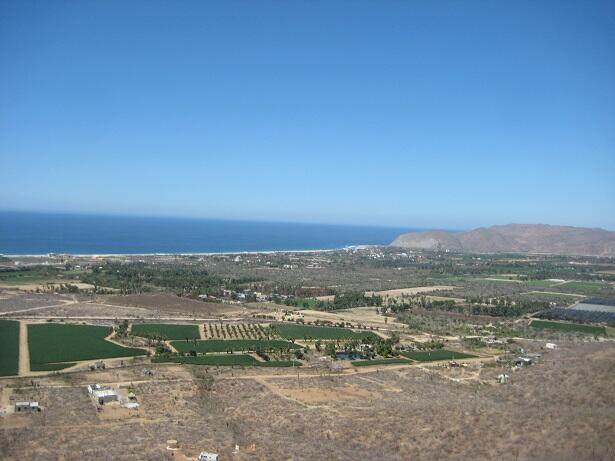 Sin Nombre, Pacific, MX  (MLS #21-3493) :: Own In Cabo Real Estate