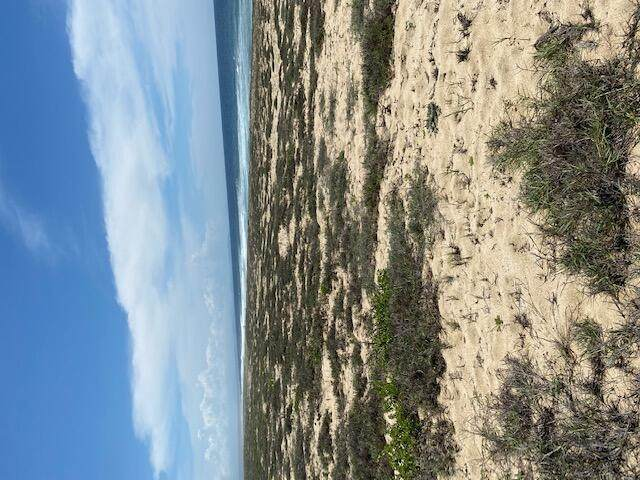 Calle S/N, Pacific, MX  (MLS #21-3514) :: Own In Cabo Real Estate