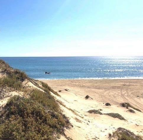 Beachfront San Luis Lot #6, East Cape, BS  (MLS #21-54) :: Coldwell Banker Riveras