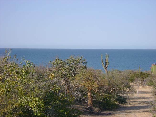 Los Barriles-Santa Teresa Road Lot 143 - Photo 1