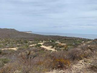 Laguna Hills Block 6 Lot 11, San Jose del Cabo, BS  (MLS #21-793) :: Coldwell Banker Riveras