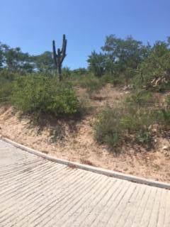 Ave Baja California, San Jose Corridor, BS  (MLS #18-1802) :: Los Cabos Agent