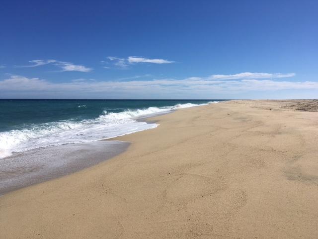 Playa Tortuga - Photo 1