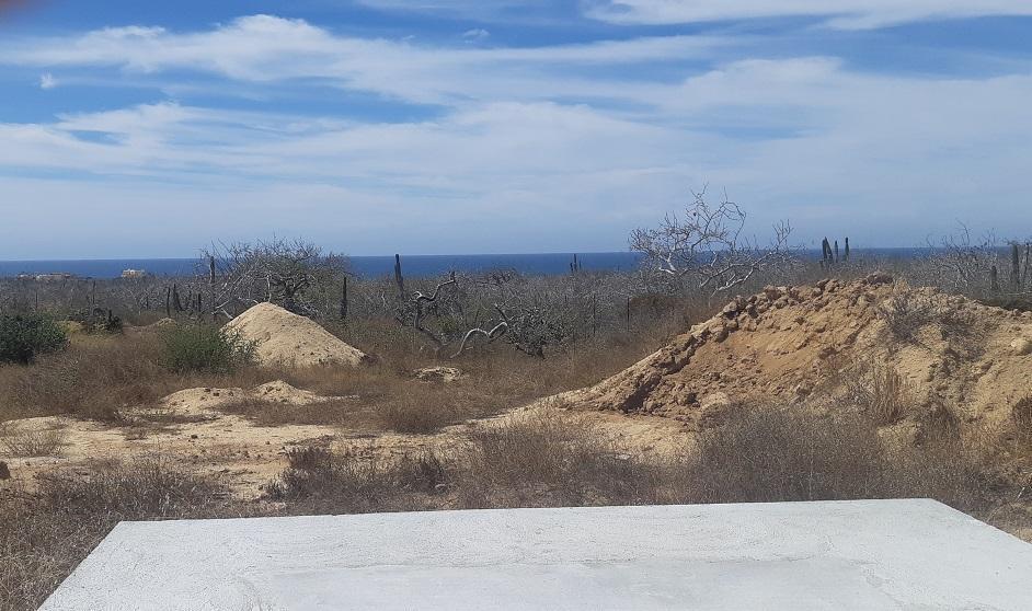 45 Main Rancho Migrino Road - Photo 1