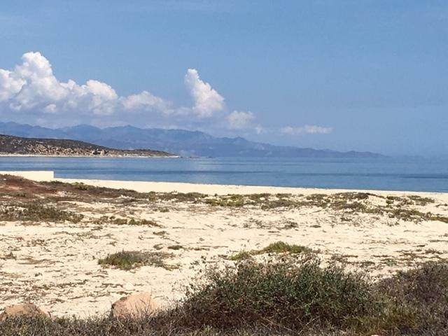 Ave Playa Feliz, East Cape, BS  (MLS #20-1647) :: Coldwell Banker Riveras